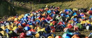 a lot of tents camping