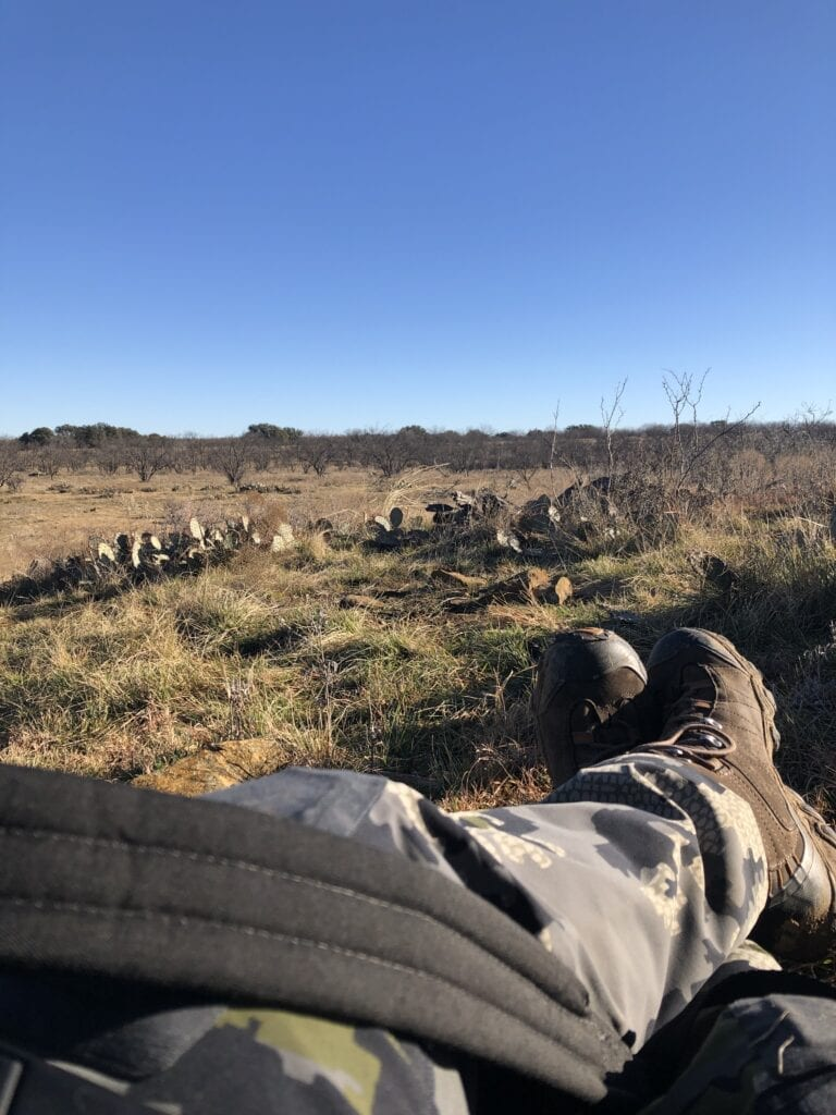 hunting in texas